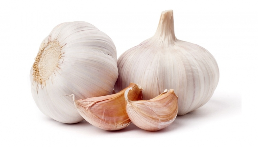 Garlic, a small miracle