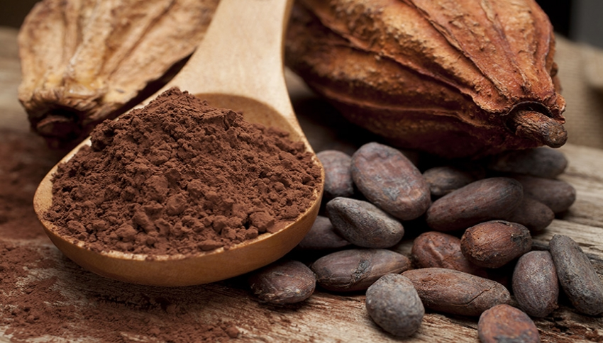Cocoa: Health, Beauty, Balance!